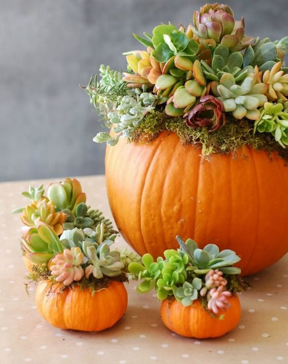 12 Beautiful Pumpkin Designs For Halloween 2017